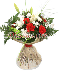 Bouquet of Carnations and Lilies