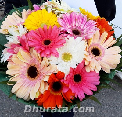 Bouquet 15 Colorful gerbera